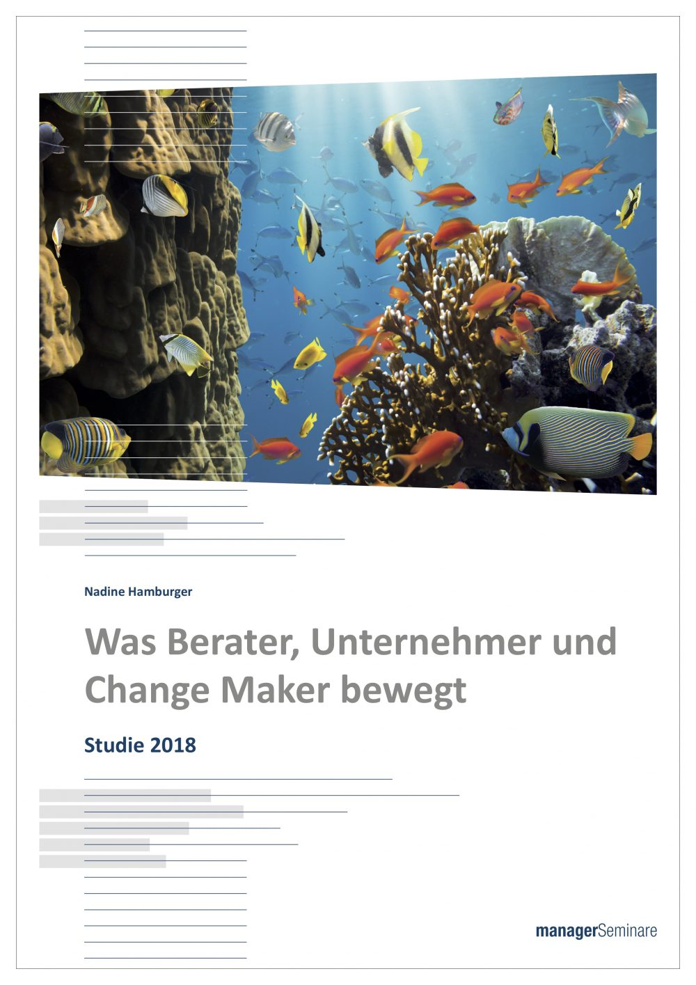 Studie-Was-Berater-und-ChangeMaker-bewegt_Cover2-e1538993877965